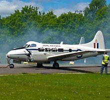 De Havilland DH104 Devon by Robert Gipson