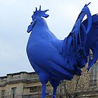 Giant Blue Cockerel  by karina5
