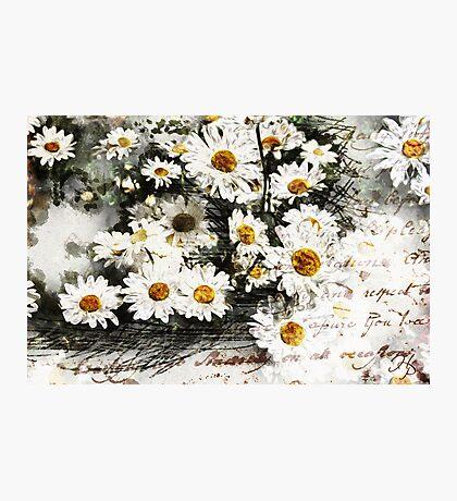 Favorite Flowers Photographic Print
