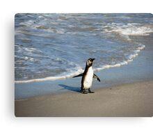 Beach Penguin Canvas Print
