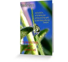 Tender Grass Greeting Card