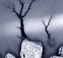 Ice Forest #5 by merrywrath