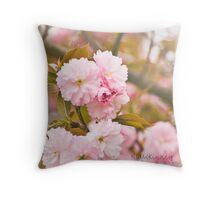 Spring!! Throw Pillow