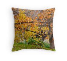 Mixing Of The Seasons 2 Throw Pillow