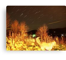Falcons View Star Trail Canvas Print