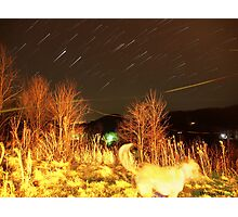 Falcons View Star Trail Photographic Print