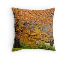 Mixing Of The Seasons Throw Pillow