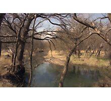 Country Creek Photographic Print