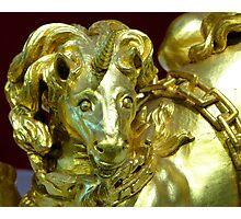 Golden Unicorn Photographic Print