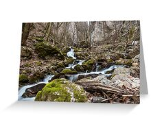Water stream in Zadielska valley Greeting Card