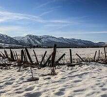 Sea of Snow by MsEphotography