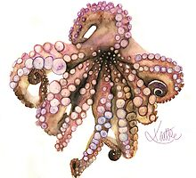Watercolor Pencil Octopus by Kaitlee Venable