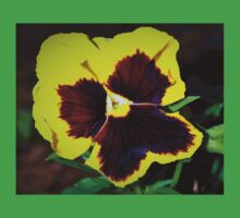 Bold yellow pansy Kids Clothes
