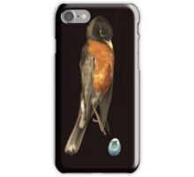 Robin and Egg iPhone Case/Skin