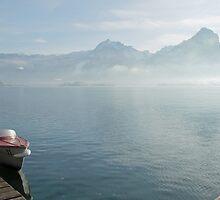 Lifting fog by Arie Koene
