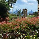 Country garden by PhotosByG