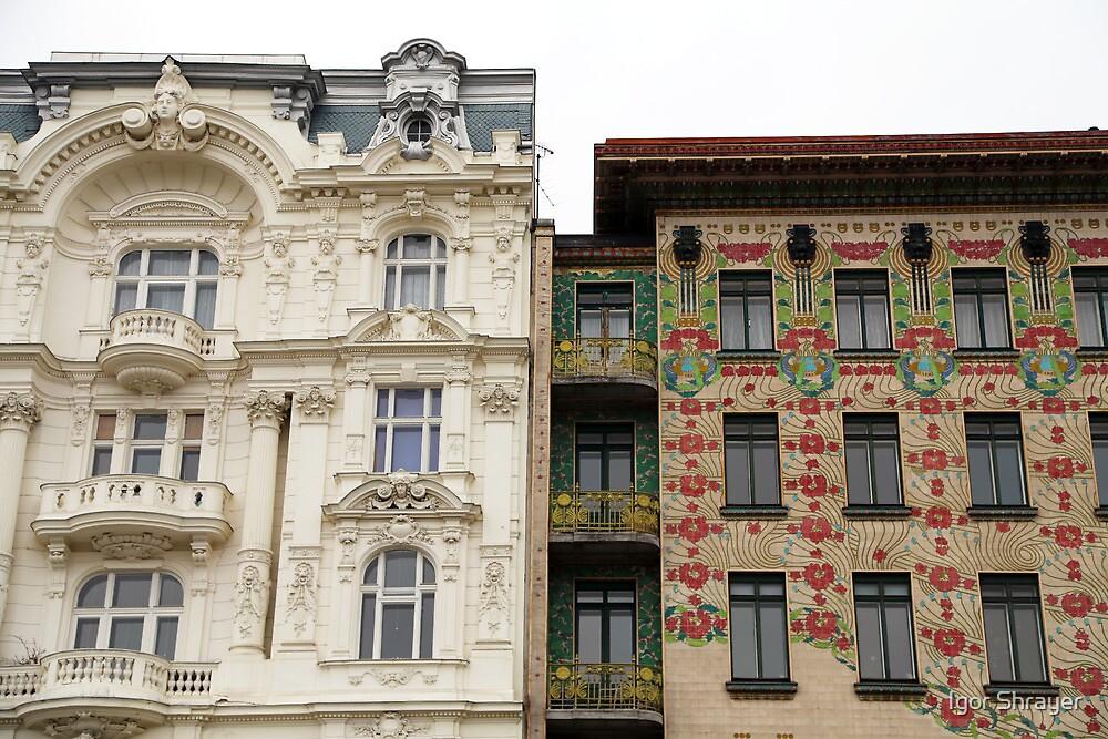 Viennese Art Nouveau by Igor Shrayer