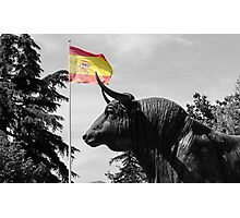 Ronda - Plaza de Toros Photographic Print