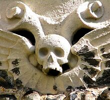 Winged Stone Skull by Lauren McGregor