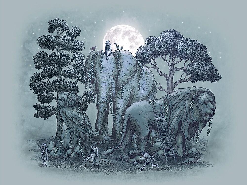 Midnight in the Stone Garden by Eric Fan