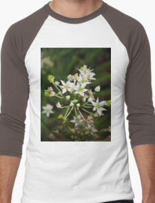 Garlic chive flowers Men's Baseball ¾ T-Shirt
