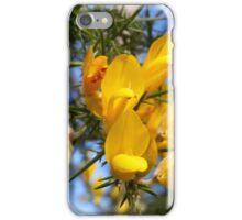 Gorse Flowers iPhone Case/Skin