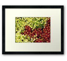 Yin Yang Flowers Framed Print