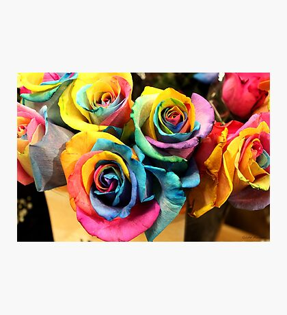 Colorful Bouquet of Rainbow Roses Photographic Print