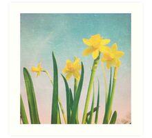 Springtime sunshine Art Print