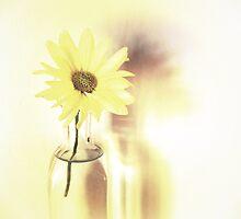 My favorite flower. by whimsymonger