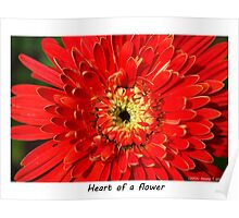 Heart of a flower Poster