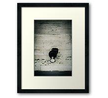 Light of the Past Framed Print