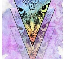 Owl by Bethany-Bailey
