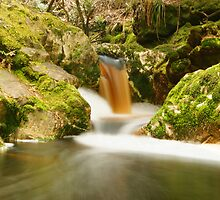 Another golden cascade above Detention Falls by Nic Haygarth