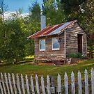 Farm Shed, Franklin, Tasmania by Chris Cobern