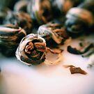 Jasmine Tea Pearls by Fiona Christensen