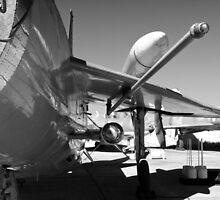 English Electric Lightning F.6 by Robert Gipson