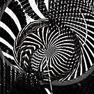 the evocation of pi by Benedikt Amrhein