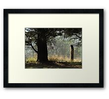 Morning mystery Framed Print
