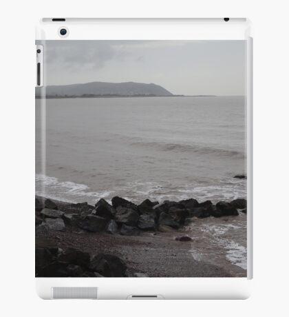 Dull iPad Case/Skin