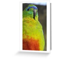 Parrot Two Greeting Card