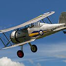 Gloster Gladiator I K7985 G-AMRK banking in the sunshine by Colin Smedley