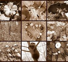 Sepia Collage 1 by artofdoodles