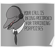 For Training Porpoises Poster