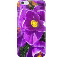 Purple Flower iPhone Case iPhone Case/Skin