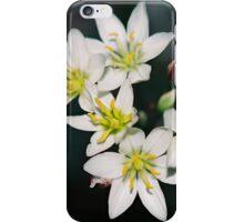 Zakia iPhone Case/Skin