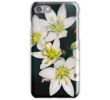 Zakia iPhone Case/Skin