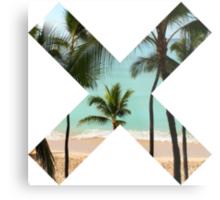 Beach X  Metal Print