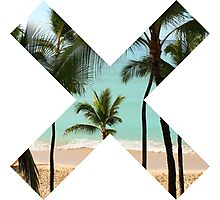 Beach X  Photographic Print