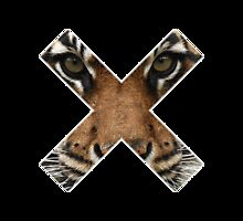 Tiger X by brileybieber